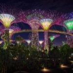Gardens by the Bay, Singapore #0197