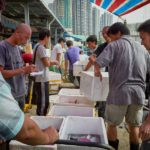 Aberdeen Wholesale Fish Market in Hong Kong